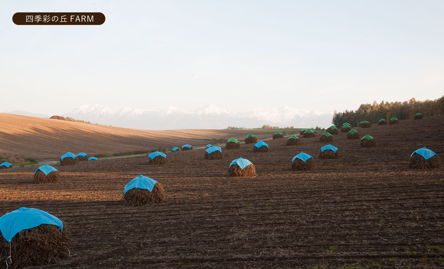 四季彩の丘FARM